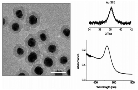 XPS Characterization of Au (Core)/SiO2 (Shell) Nanoparticles