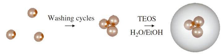 Advanced Hybrid Nanoparticles