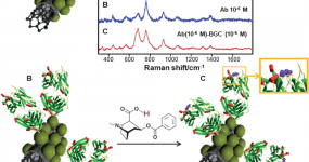 Label-free SERS detection of relevant bioanalytes on silver-coated carbon nanotubes