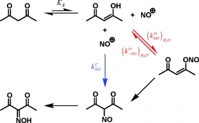 First Kinetic Discrimination between Carbon and Oxygen Reactivity of Enols