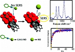 SERS Study of the Controllable Release of Nitric Oxide from Aromatic Nitrosothiols on Bimetallic, Bifunctional Nanoparticles Supported on Carbon Nanotubes