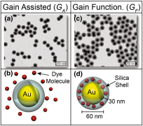 Gain-assisted plasmonic metamaterials: mimicking nature to go across scales