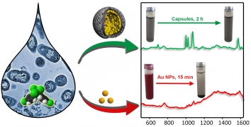 Microporous Plasmonic Capsules as Stable Molecular Sieves for Direct SERS Quantification of Small Pollutants in Natural Waters
