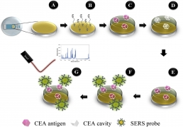 Dual Biorecognition by Combining Molecularly-Imprinted Polymer and Antibody in SERS Detection. Application to Carcinoembryonic Antigen
