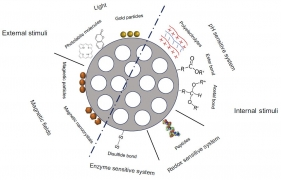 Controlled Drug Delivery Systems for Cancer Based on Mesoporous Silica Nanoparticles